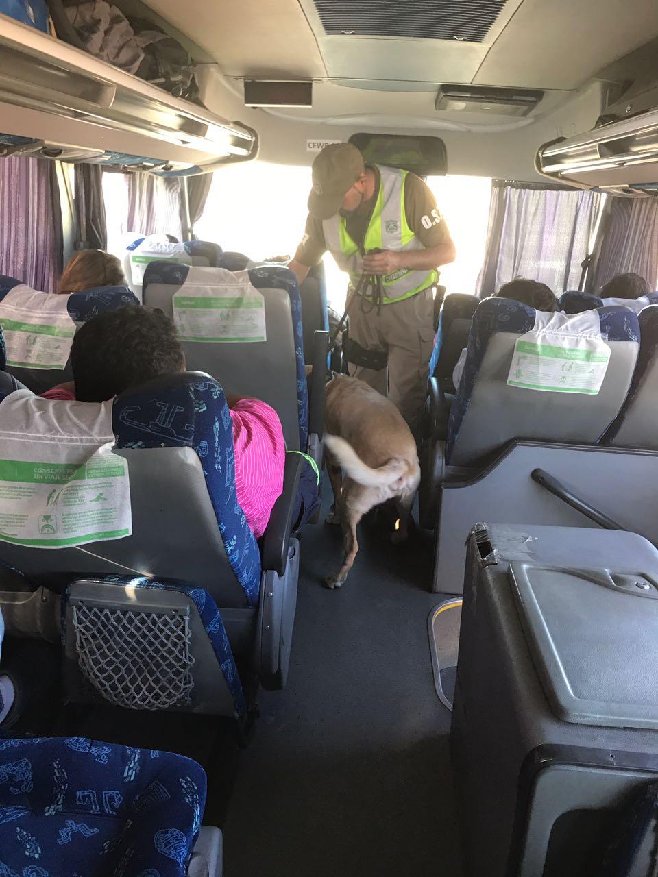 Photo of 3 chilenos y 1 boliviano detenidos por tráfico de drogas