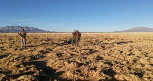 Ciudadano boliviano es octava persona que fallece en la frontera de Colchane